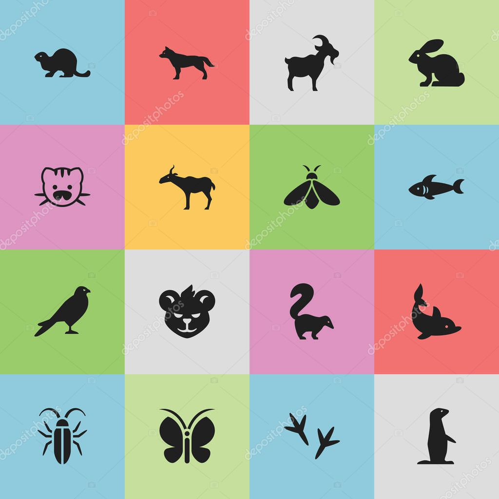 Set Of 16 Editable Zoology Icons. Includes Symbols Such As Beast, Playful Fish, Footprint And More. Can Be Used For Web, Mobile, UI And Infographic Design.