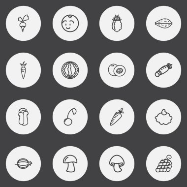 Set Of 16 Editable Cooking Outline Icons. Includes Symbols Such As Cherry, Peach, Cep And More. Can Be Used For Web, Mobile, UI And Infographic Design.