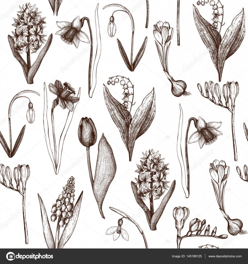 Dessin De Fleurs De Printemps Image Vectorielle Geraria