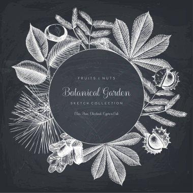 Garden trees illustration