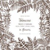 Fényképek fák és cserjék, virágok keretben