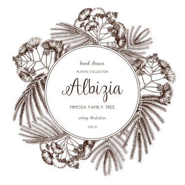 Vector frame with delicate Albizia elements