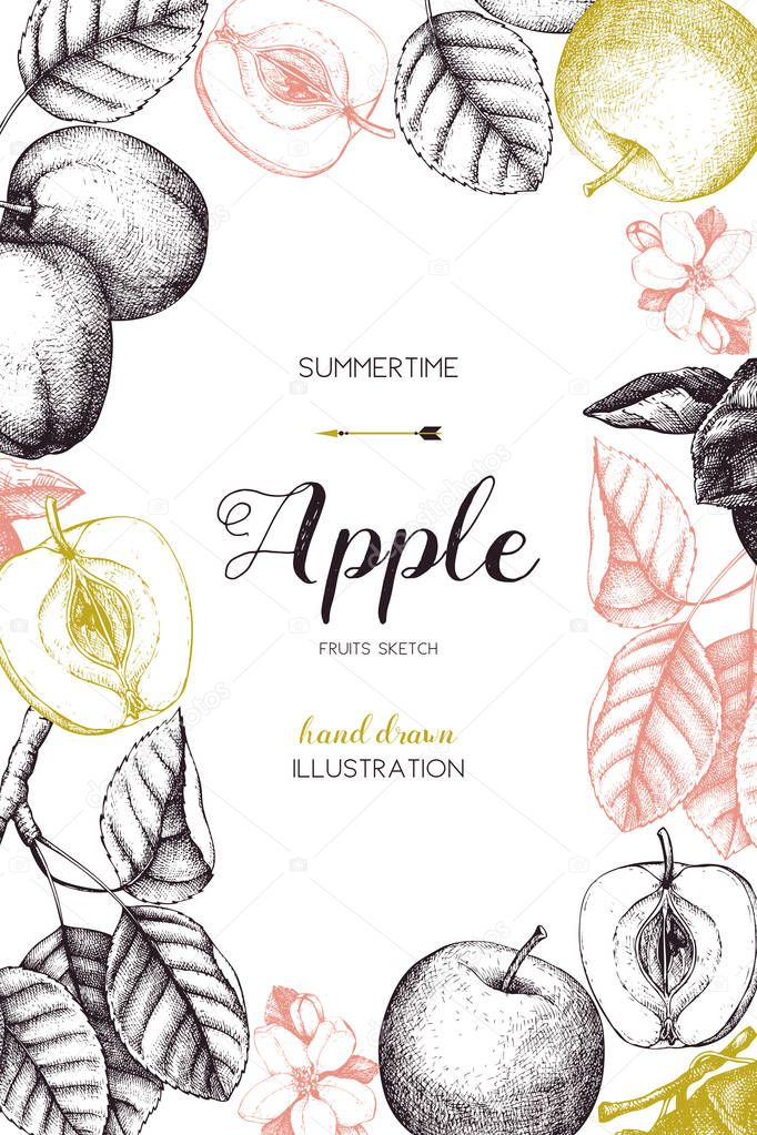 Vintage card design with apple fruits sketch.