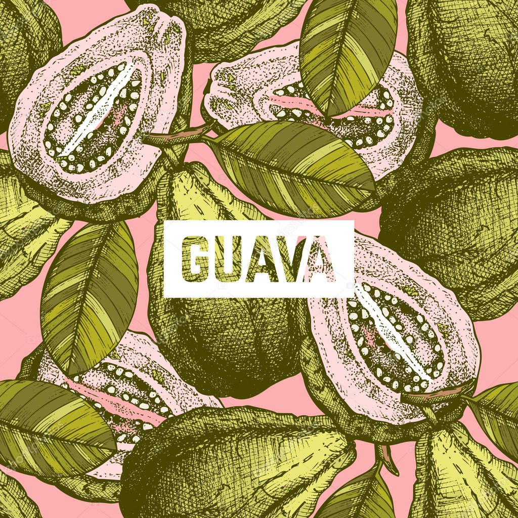 Vector Guava fruit background.