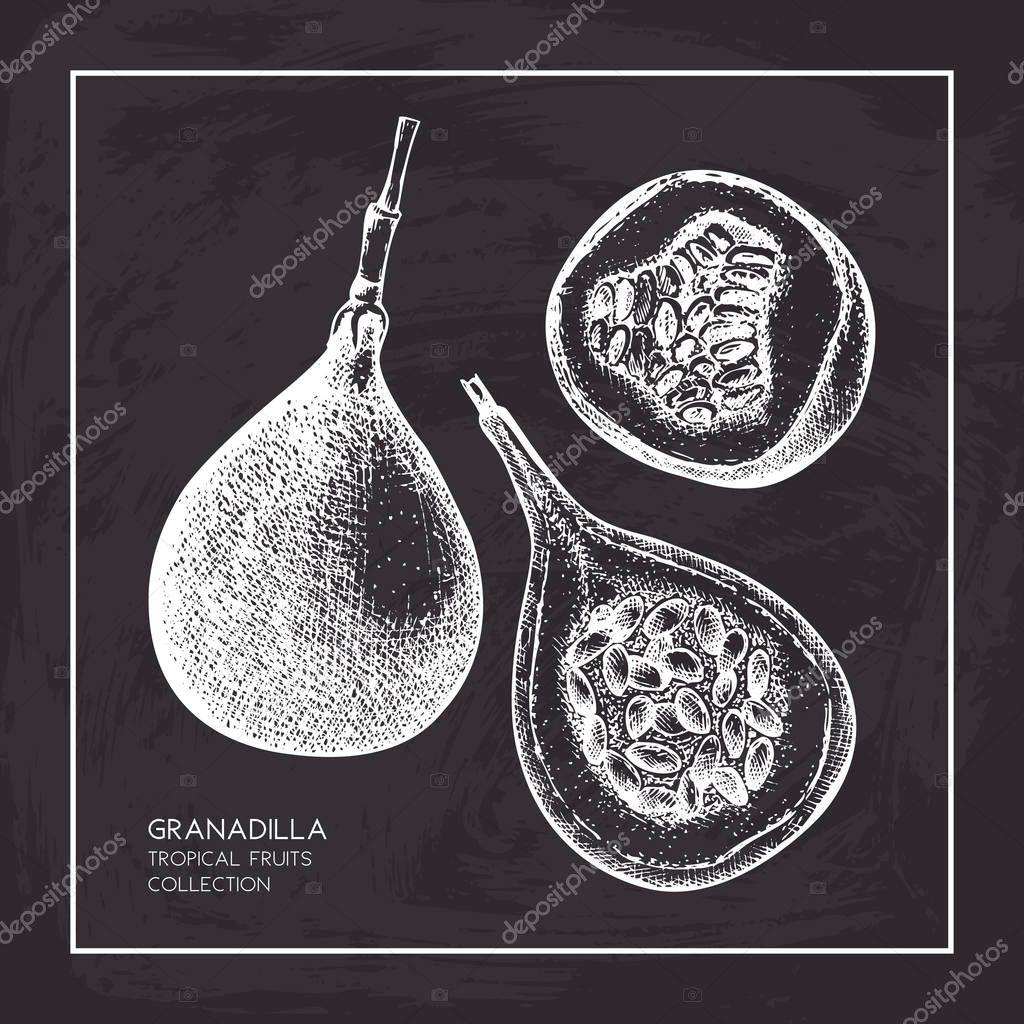 Sweet granadilla illustration.