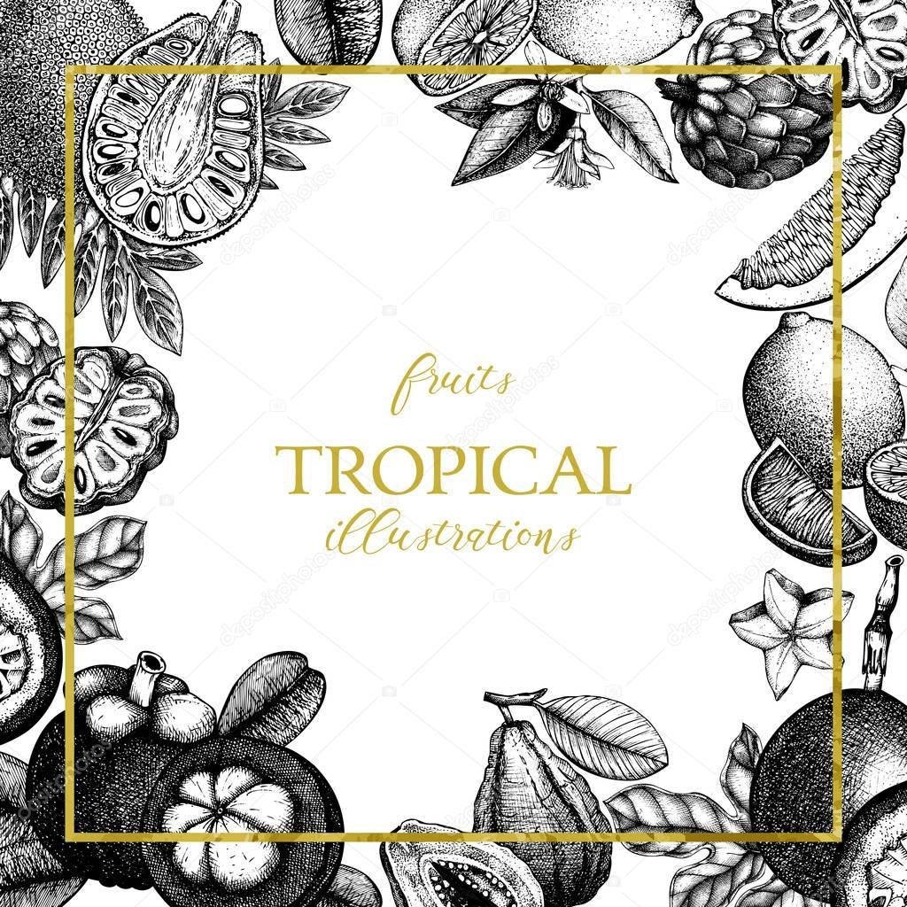 Vector tropical fruits design