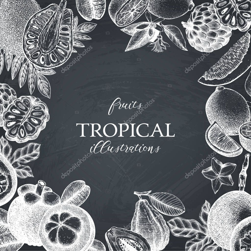 Vector tropical fruits design on chalkboard