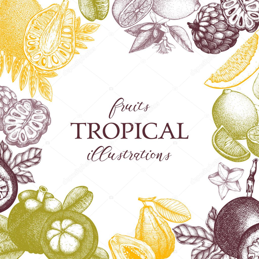 Vector tropical fruits design