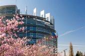 Štrasburk, Francie – 6. dubna 2018: Evropský parlament centrála s třešeň sakura květy kvetou na teplý jarní ráno se všemi vlajkami Evropské unie mává