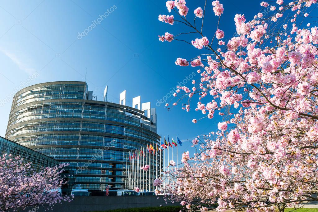 STRASBOURG, FRANCE - APRIL 6, 2018: European Parliament building with cherry tree in bloom sakura flowers on a warm spring morning with all European union flags waving