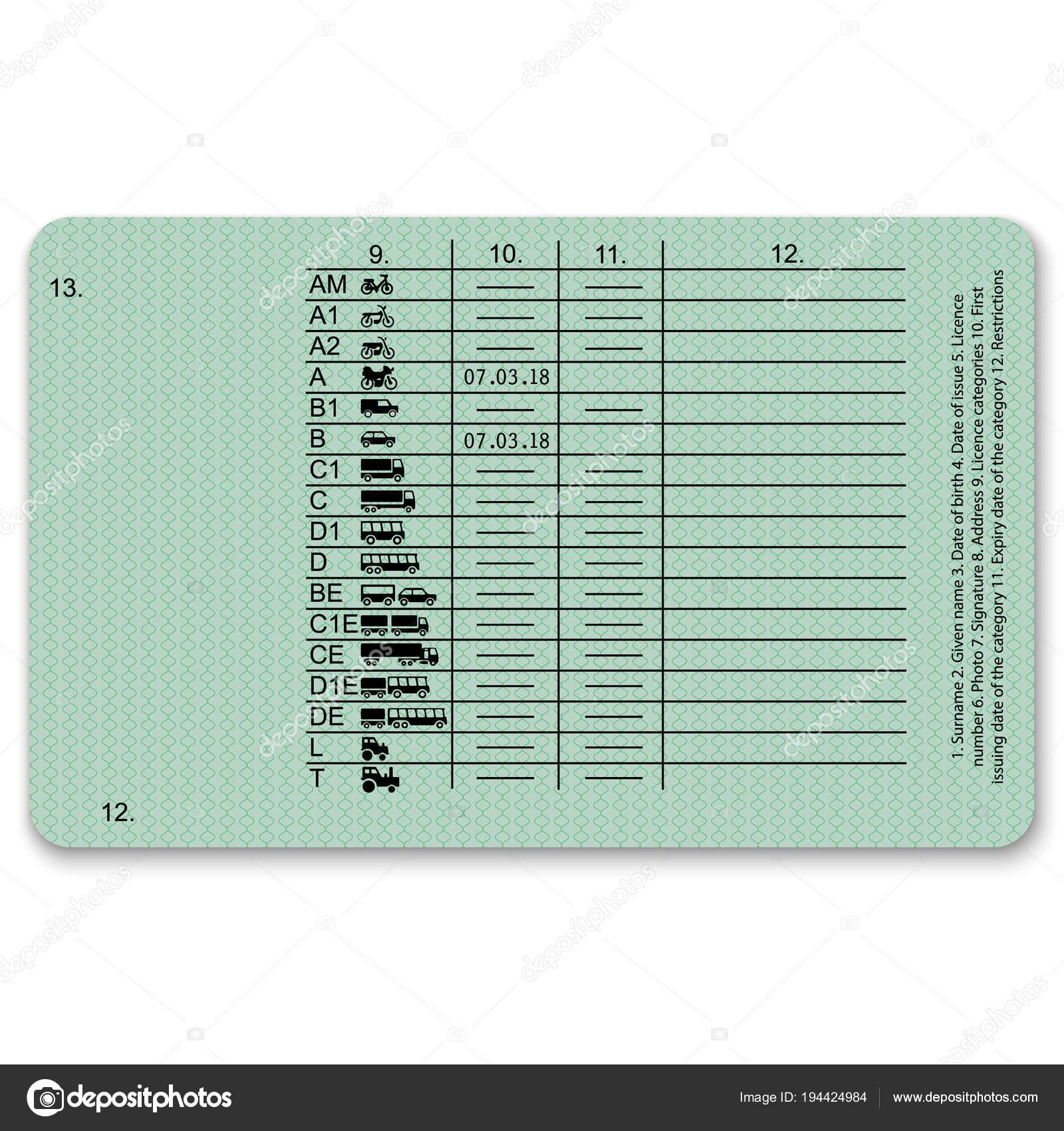 Набор эскиз водительских удостоверений — векторное изображение.