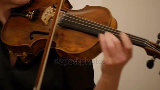 Detail hudebníka, hrajícího na housle