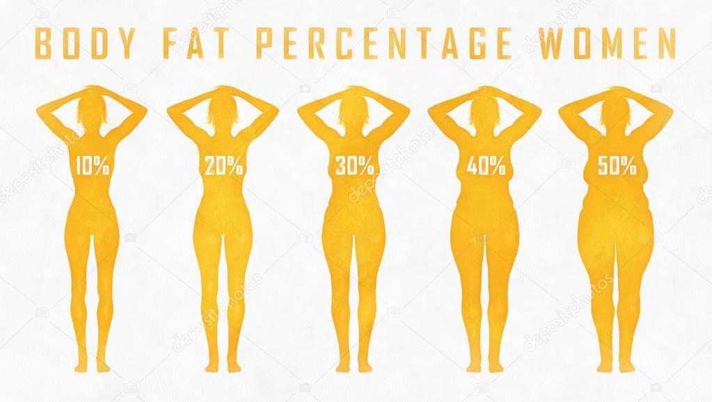 body fat percentage woman — Stock Photo © a3art.ru.gmail ...