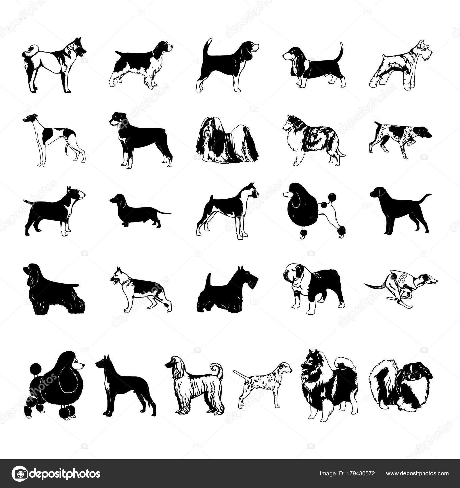 Hund Clipart Cartoon Vektor Illustration Stockvektor Oriu007