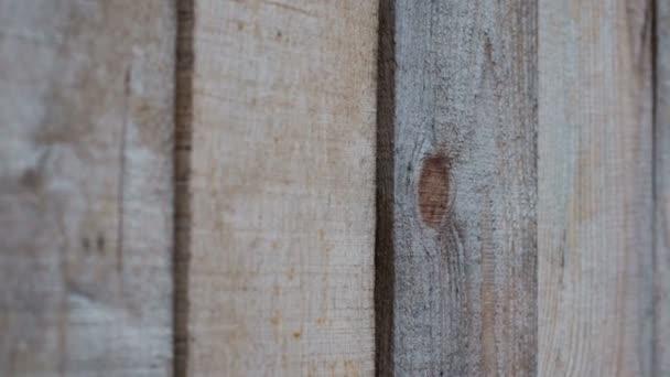 Textura pozadí z dřevěných prken v pohybu na pravé straně