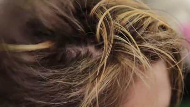 Professzionális fodrász nő hajszárító ügyfél.