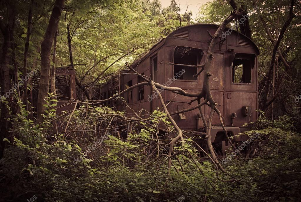 Abandones train in forest