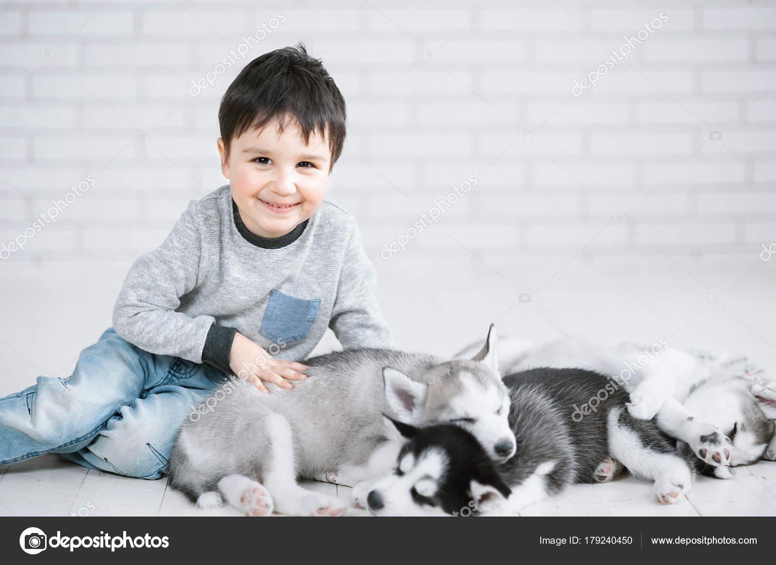 896a26c9d2ed Χαριτωμένο μικρό αγόρι και τρία νεαρά κουτάβια χάσκι στον ύπνο σε λευκό  φόντο. Σύμβολο του νέου έτους 2018 — Εικόνα από ...