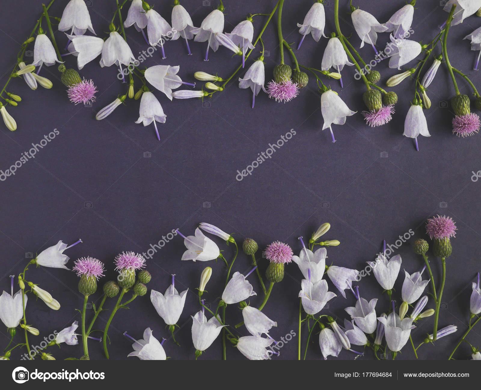 Composicion Flores Con Flores Campana Siemprevivas Foto De Stock