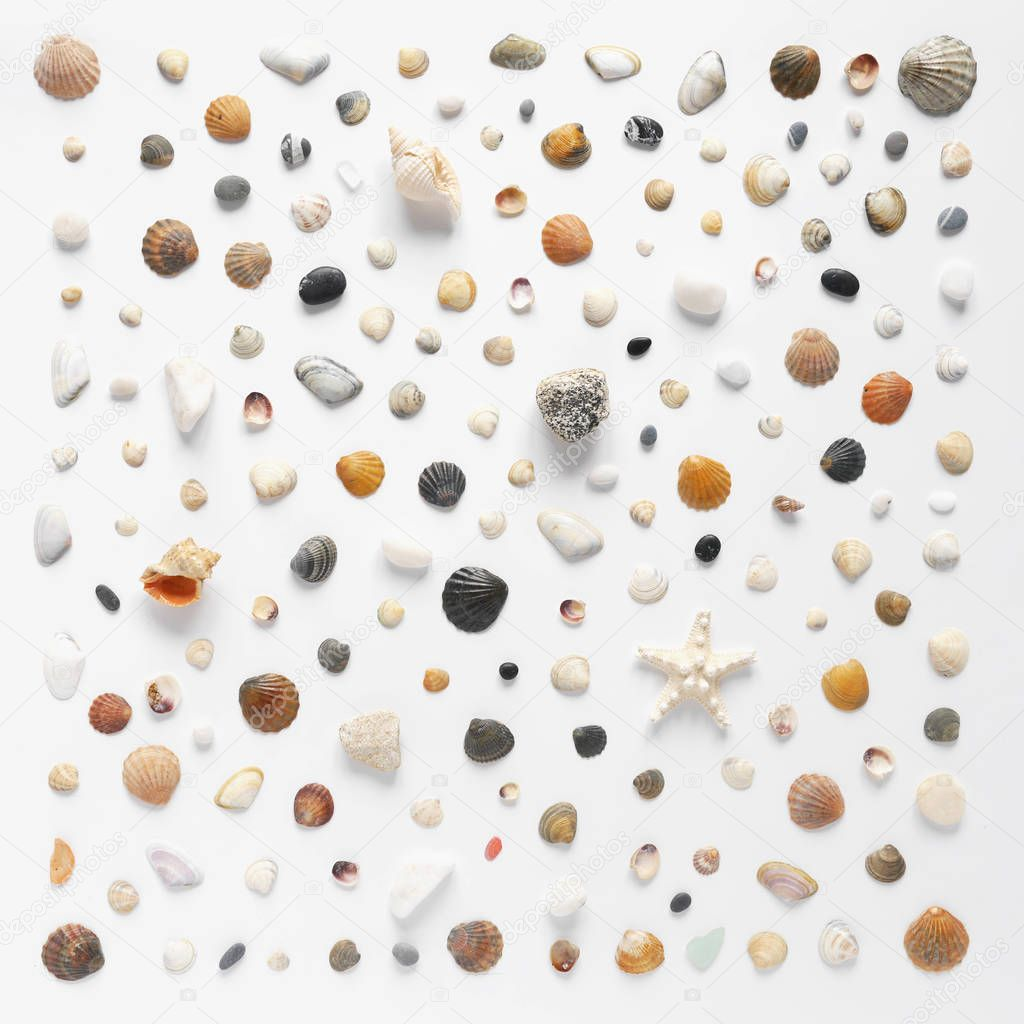 Composition of natural materials on white background