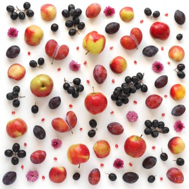close-up photo of fresh fruits set of apples and plums on white table background