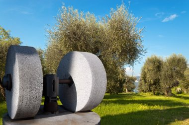 Old Olive Press and Olive Trees - Italy