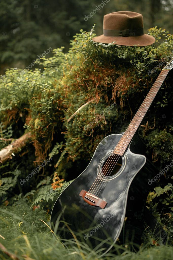 Guitar and man's felt hat in forest. Closeup.