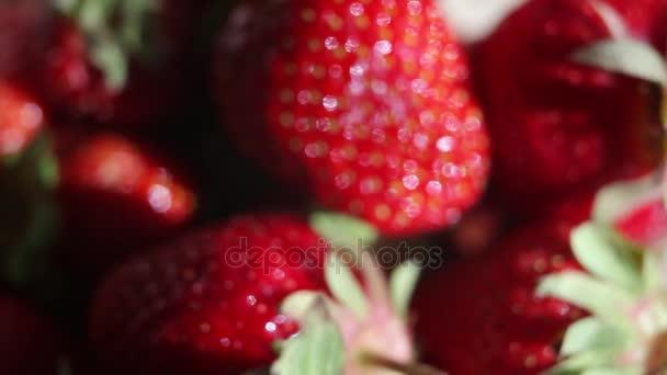 Jahody na bílém pozadí, detail. Čerstvý jahodový detail