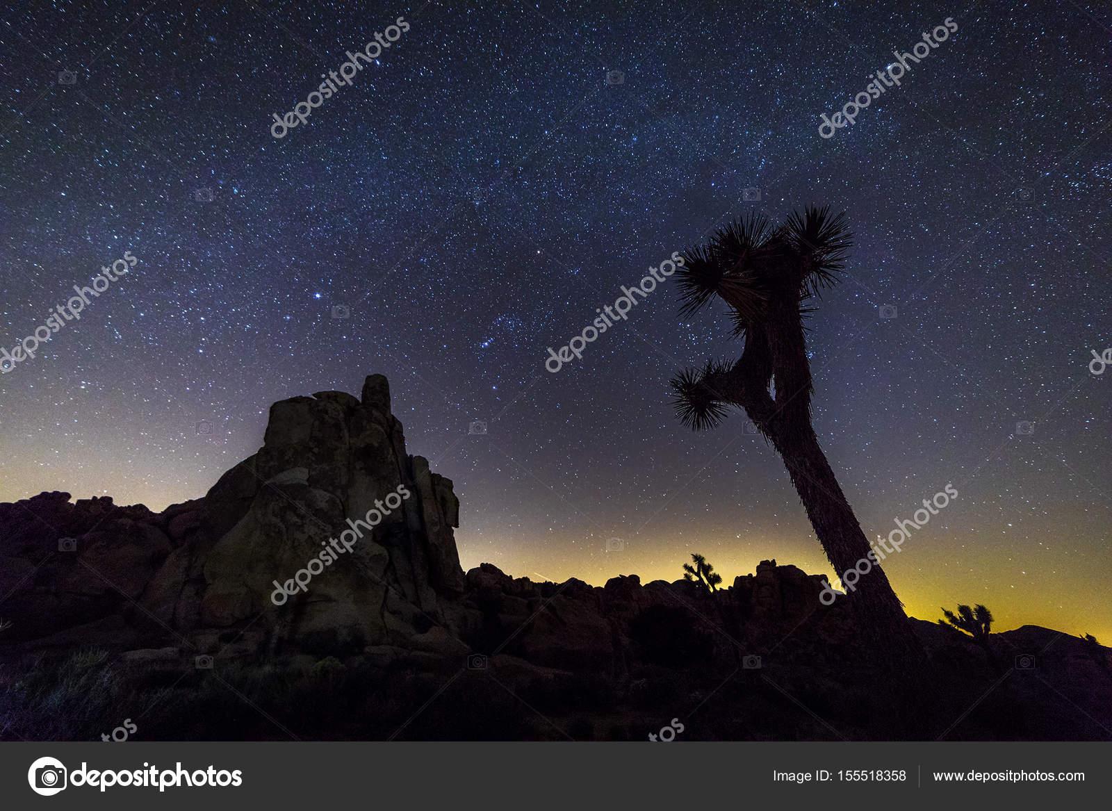 Night Sky Over Joshua Tree National Park California Stock