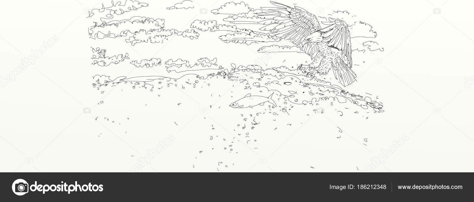 Drawing flying eagle stock photo