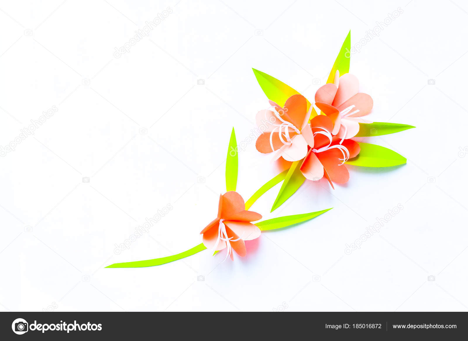 Frame With Color Paper Flowers On The White Background Flat Lay