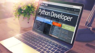 Python Developer Hiring Now. 3D.