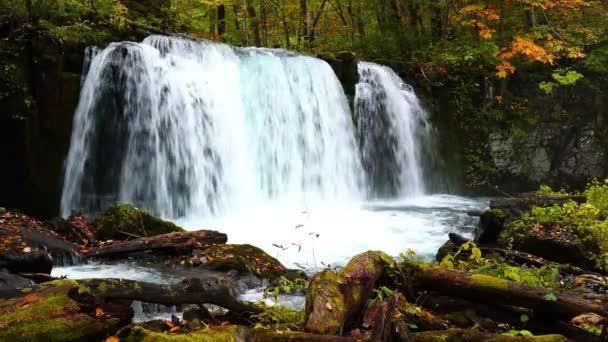 Choshi Otaki, Vodopády u potoka Oirase v podzimní sezóně v národním parku Towada Hachimantai v prefektuře Aomori, Japonsko.