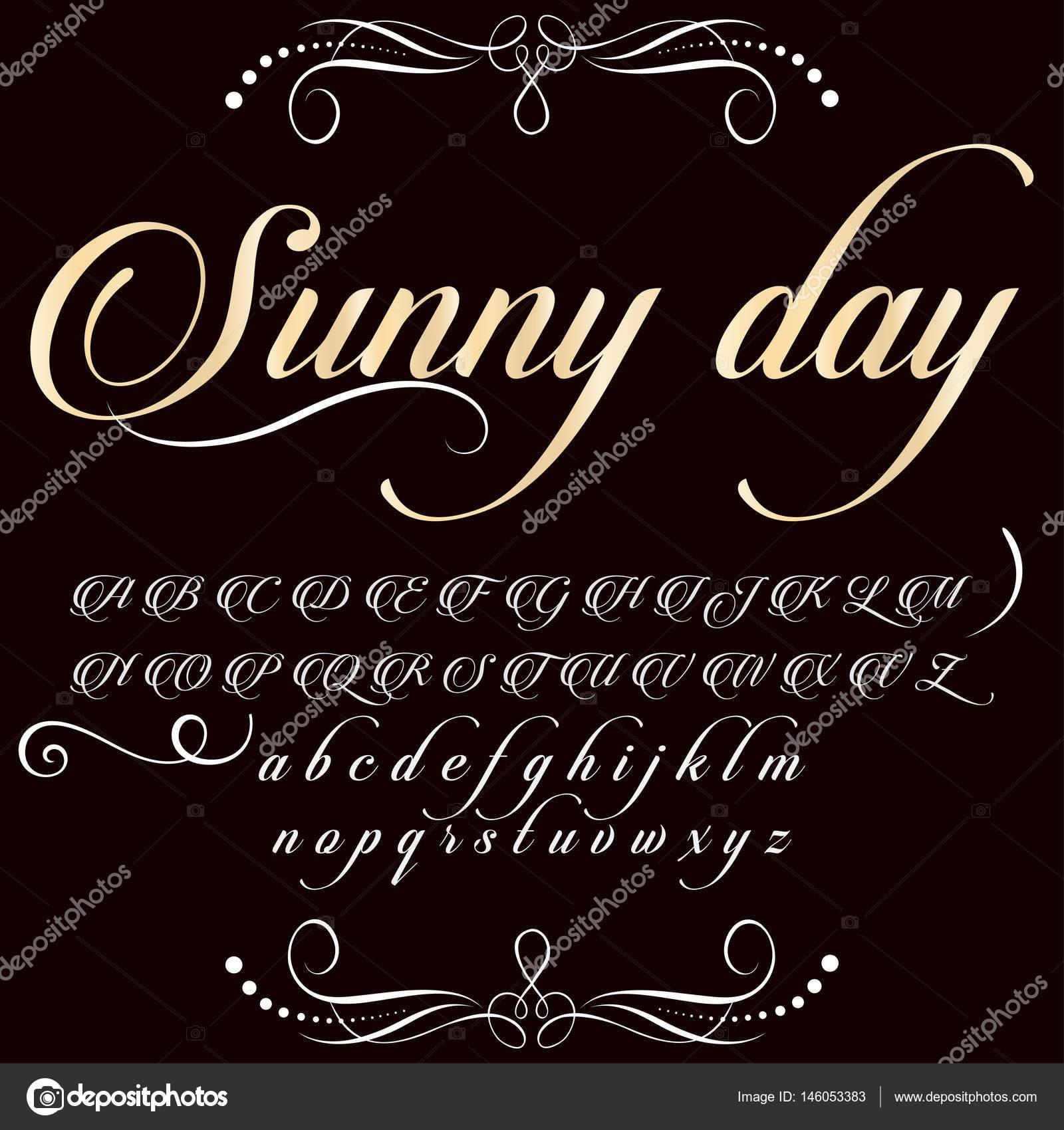 Script Font Typeface Sunny day vintage script font Vector typeface
