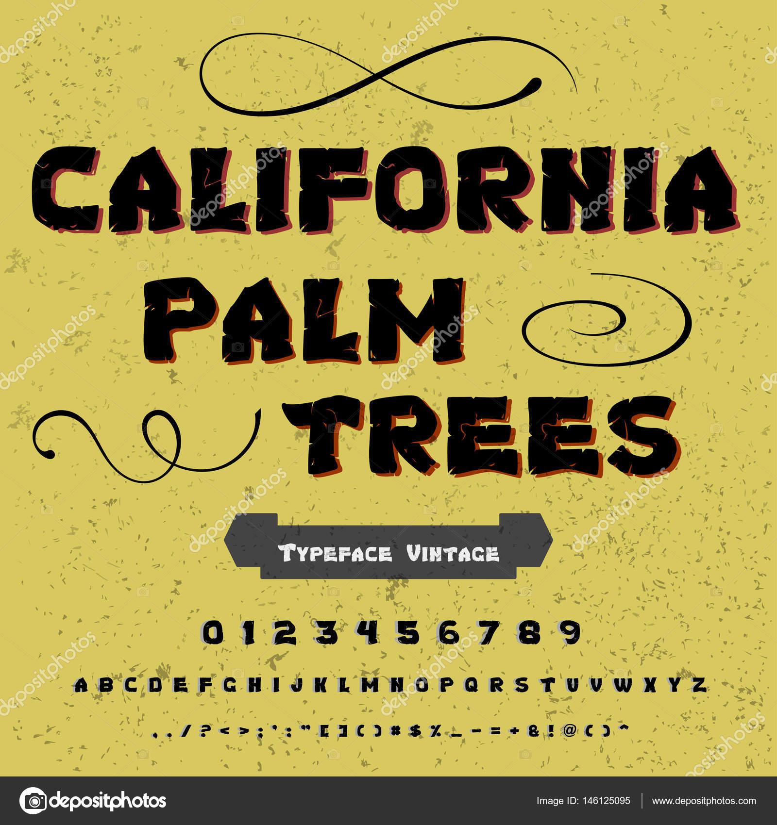 Font Script Typeface vintage california palm trees- script