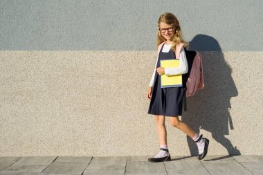 A schoolgirl of elementary school with notebooks in his hand. A
