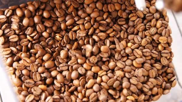 aromatic coffee grains