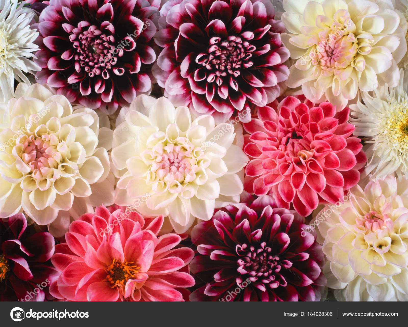Colorful flower bouquet, flowers background — Stock Photo © Intel.nl ...