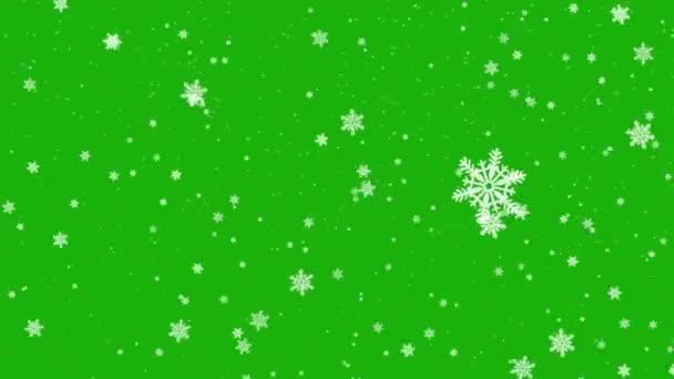Zelená obrazovka. Krásné vánoční sněhové vločky víří a padají shora dolů. Izolováno na zeleném pozadí.