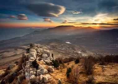 Lavender fields in Crimea