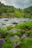 fiume selvaggio nel Parco nazionale