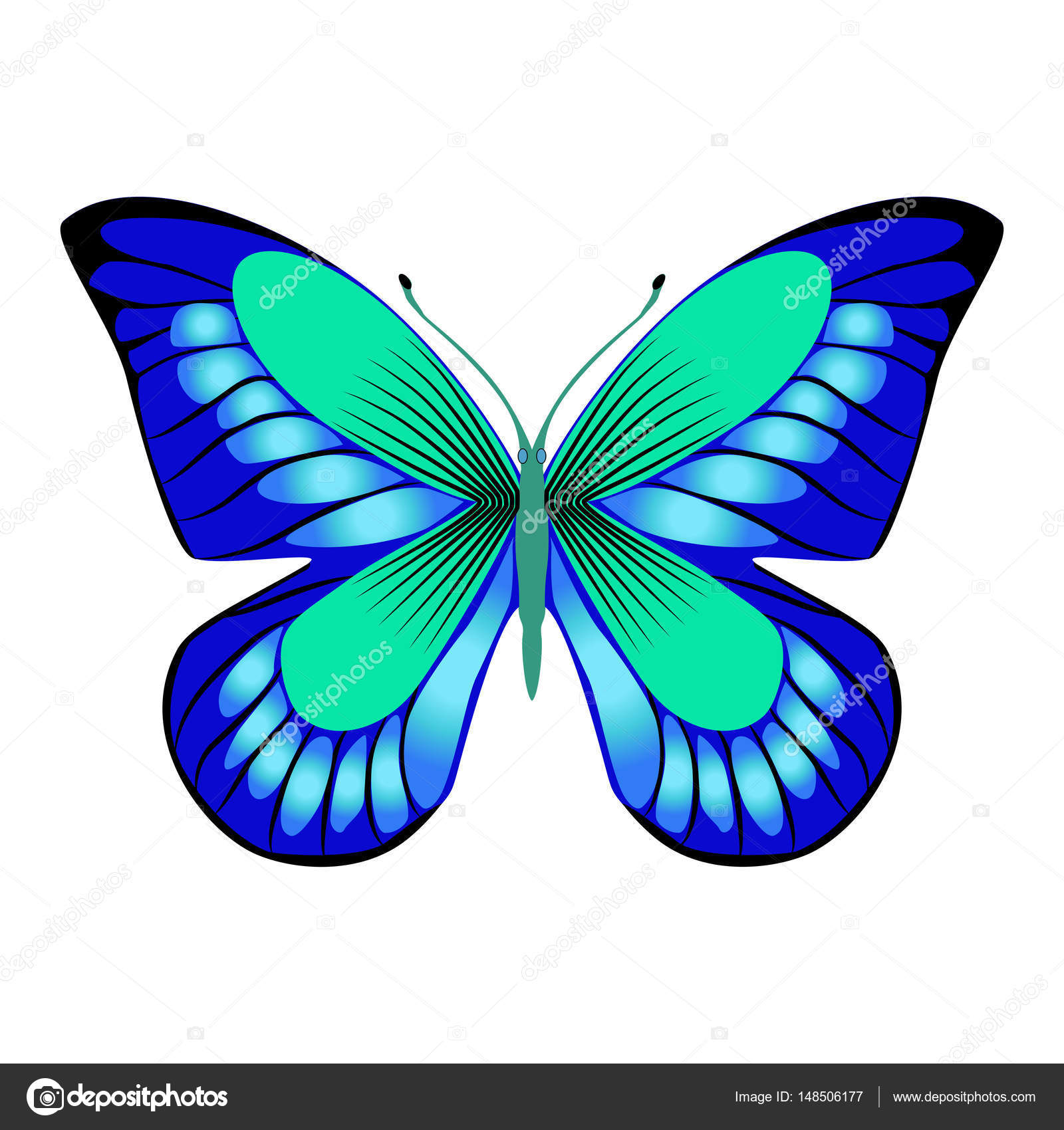 bright beautiful decorative blue butterfly vector illustration rh depositphotos com White Vector blue butterfly vermont