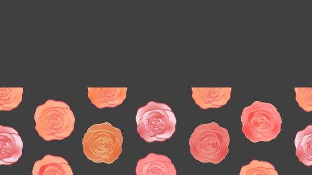 Nádherné růže pozadí videa. Pohyblivý vzorec. Nápis - web