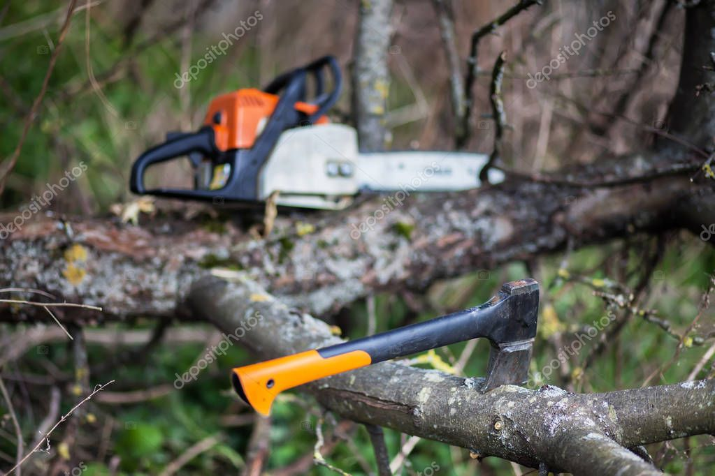 An axe and chainsaw are on the tree