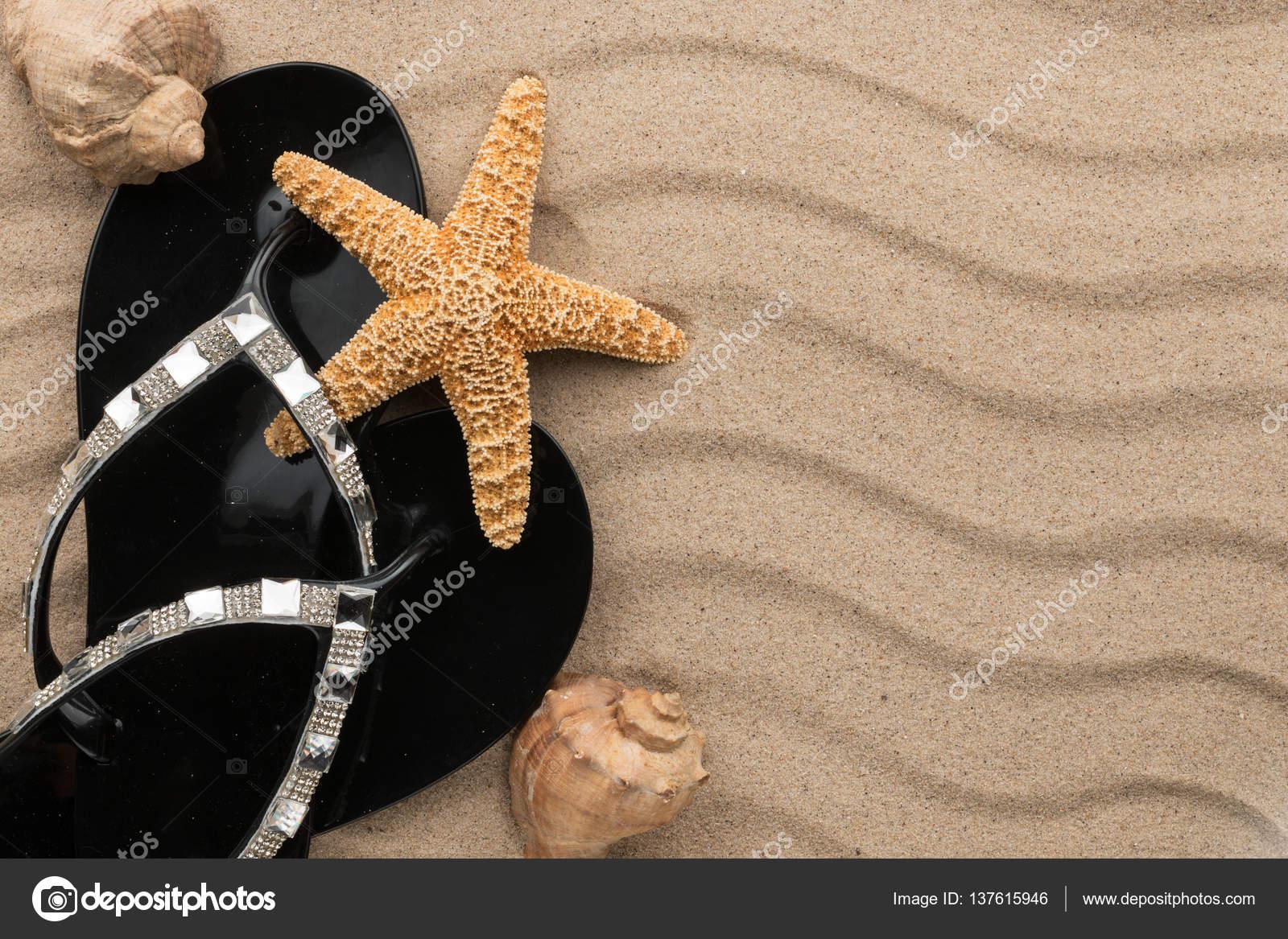Sandalias negras con pedrería y conchas, estrellas de mar sobre la ...