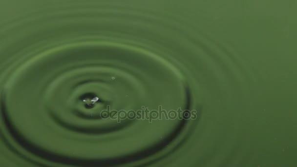 Detail kapka kapku vody v zelené vodě