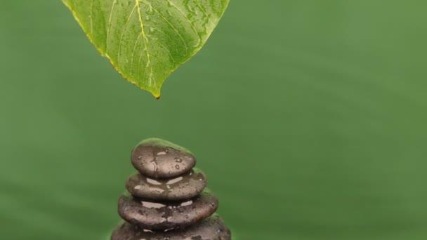 Csepp vizet csepegtető egy zöld levél egy piramis készült fekete kövek.