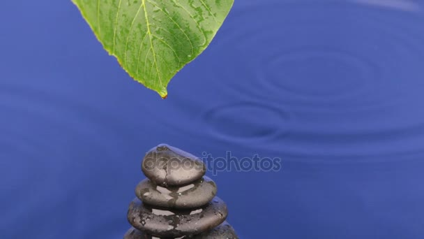 Kapání kapek vody z zelený list na pyramidu z černých kamenů.