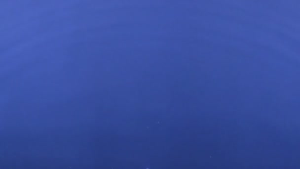Detail kapka kapku vody v modré vodě