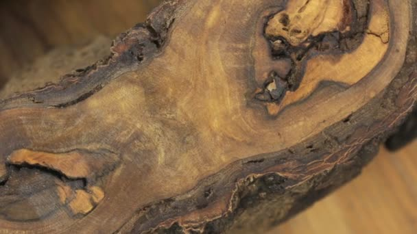Close-up of the rotation of walnut tree trunk texture. Surface of wood background for design and decoration.
